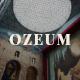 Ozeum - Modern Art Gallery & Museum Elementor Template Kit - ThemeForest Item for Sale