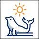 Seal Sun Logo Template - GraphicRiver Item for Sale