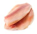 Fish fillet - PhotoDune Item for Sale