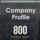 Company Profile Keynote Templates Bundle - GraphicRiver Item for Sale