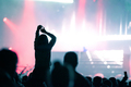 Rear view of silhouette of crowd with arms outstretched at concert. Summer music festival - PhotoDune Item for Sale