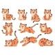 Cute Baby Tigers - GraphicRiver Item for Sale