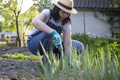 Closeup photo of woman digging out onion with spade - PhotoDune Item for Sale