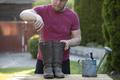Gardener man planting flowers. Gardening and floriculture. - PhotoDune Item for Sale