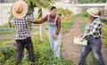 Multiracial farmer people working at garden - Focus on center woman face - PhotoDune Item for Sale