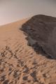 background sand - PhotoDune Item for Sale