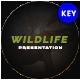 Wildlife Animal Keynote Template - GraphicRiver Item for Sale