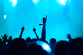 Rear view of silhouette of crowd with arms outstretched at concert. Summer music festival concept - PhotoDune Item for Sale