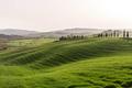 Green hills of Tuscany, springtime - PhotoDune Item for Sale