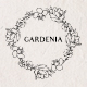 Gardenia Flowers Pencil Sketches - Line Art - GraphicRiver Item for Sale