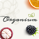 Organium | Organic Food Products WordPress Theme - ThemeForest Item for Sale