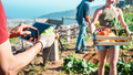 Friendly team harvesting fresh organic vegetables from the community greenhouse garden - PhotoDune Item for Sale