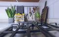 Stylish Kitchen Interior - PhotoDune Item for Sale