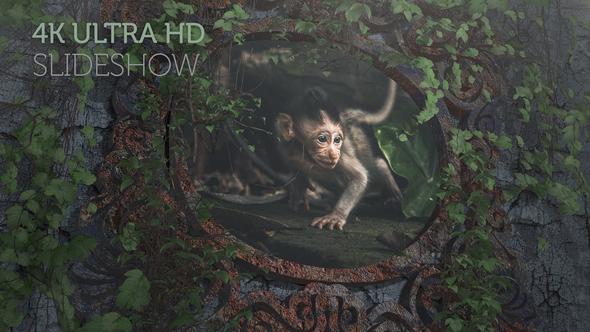 Epic Travel Slideshow (4K)