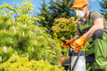 Men Fungicide His Backyard Garden Plants - PhotoDune Item for Sale