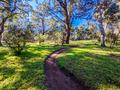 Yarra Trails in Melbourne Australia - PhotoDune Item for Sale