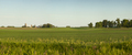 Panorama of a farm and fields on a sunny spring evening in Minnesota - PhotoDune Item for Sale
