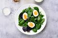 European green mix salad - PhotoDune Item for Sale