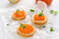 Sandwiches with red caviar - PhotoDune Item for Sale