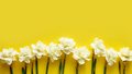 Ivory narcissus flowers on a yellow background - PhotoDune Item for Sale