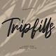 Tripfills Script Font - GraphicRiver Item for Sale