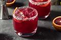 Refreshing Boozy Blood Orange Margarita - PhotoDune Item for Sale