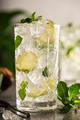 Refreshing summer homemade cocktail - PhotoDune Item for Sale