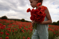 young girl picking poppies in an open field - PhotoDune Item for Sale