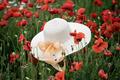 woman wicker hat in field with red poppy flowers - PhotoDune Item for Sale