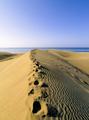 Maspalomas Dunes - PhotoDune Item for Sale