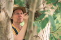 Female farmer examining walnut tree branches and leaves for common pest and diseases - PhotoDune Item for Sale
