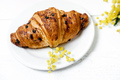 Chocolate croissant and cappuccino, decorated with mimosa flowers on a white table - PhotoDune Item for Sale