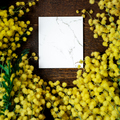 Blank for message and Bouquet of mimosa flowers on wooden background - PhotoDune Item for Sale