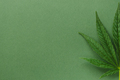 Half of Cannabis Leaf on Green Background. - PhotoDune Item for Sale