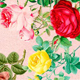 Aesthetic Vintage Flower PNG Clipart - GraphicRiver Item for Sale