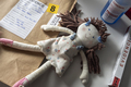 Testing of a rag doll implicated in a murder at a crime lab for DNA analysis, conceptual image - PhotoDune Item for Sale