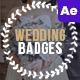 Wedding Vintage Badges - VideoHive Item for Sale