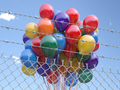 Balloons bunch behind the barbed fence. Freedom or prohibition of celebration concept. - PhotoDune Item for Sale
