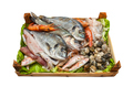 Box of fresh fish on white background. - PhotoDune Item for Sale