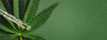 Green Banner with Pipette with Cannabis Extract. - PhotoDune Item for Sale