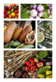 Healthy ingredients and vegetables - PhotoDune Item for Sale