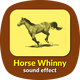 Horse Whinny Sound