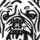 Dog Heads of different Breeds Vector Illustration On Black - GraphicRiver Item for Sale