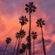 Summer Vibes - AudioJungle Item for Sale