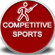 Competitive Sports Fencing