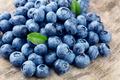 Blueberry - PhotoDune Item for Sale