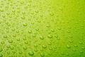 Green water drops - PhotoDune Item for Sale