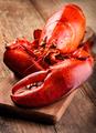 Boiled lobster - PhotoDune Item for Sale