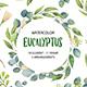 Eucalyptus Watercolor Set. - GraphicRiver Item for Sale