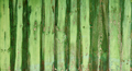 Green wooden planks - PhotoDune Item for Sale